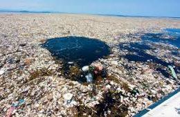 La pollution des océans…