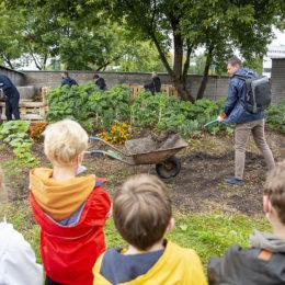 Sadyba's Garden opens up to the corporate world for joint CSR activities